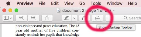 Clicking on the toolbox icon will open up an extra toolbar so that you can edit the PDF document.
